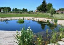 Školní arboretum - začátek léta 2. červen 2017