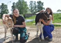 Milujeme veselý život se zvířátky!